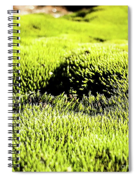 Spiral Notebook featuring the photograph Tiny Forest 2 by Atousa Raissyan