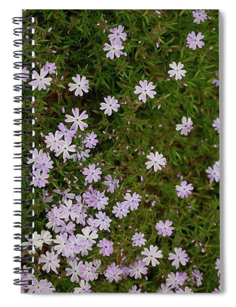 Tiny Phlox Spiral Notebook