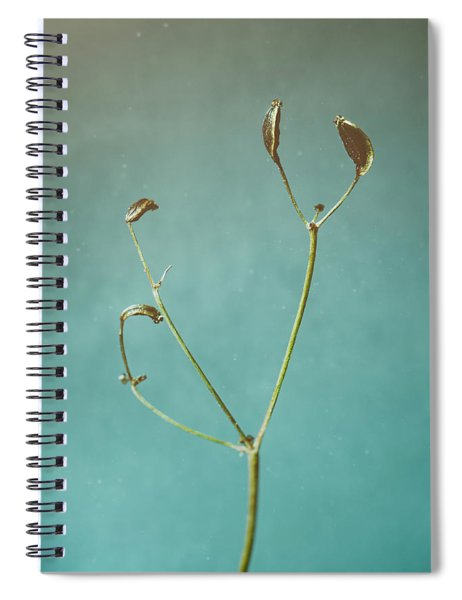 Tiny Seed Pod Spiral Notebook