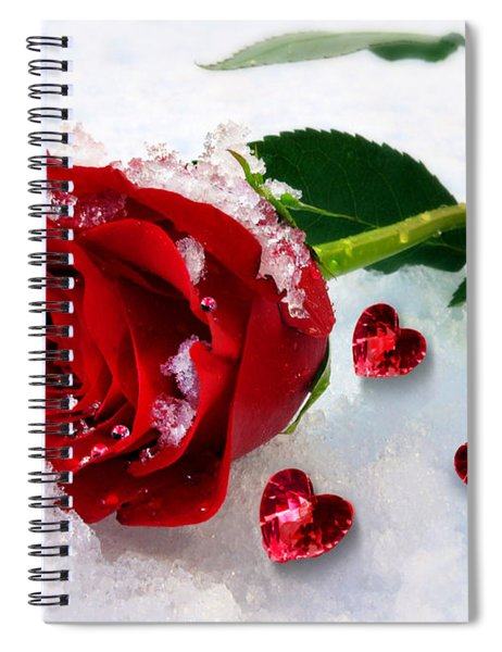 To Make You Feel My Love Spiral Notebook