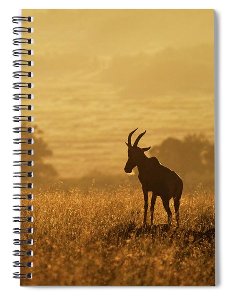Topi At The Top Of The Morning Spiral Notebook