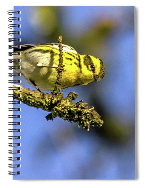 Townsend's Overhead Spiral Notebook