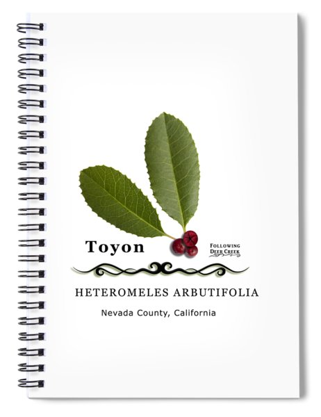Toyon Christmas Berry Spiral Notebook