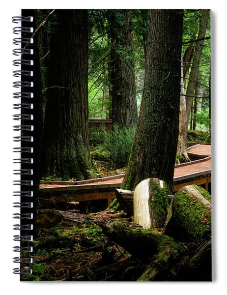 Trail Of The Ceders Spiral Notebook
