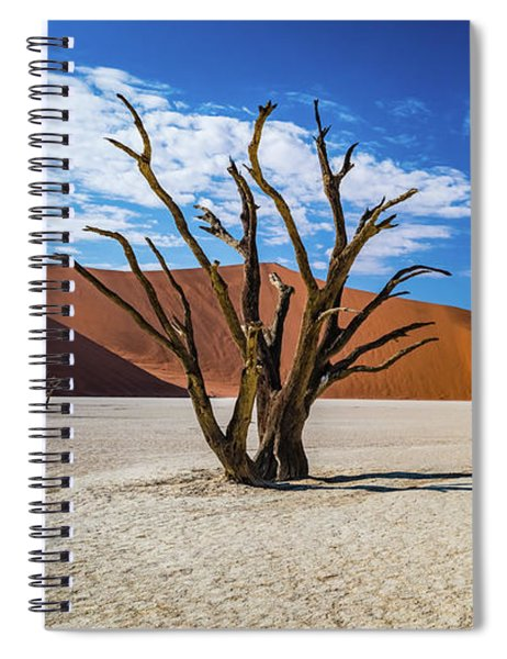 Tree And Shadow In Deadvlei, Namibia Spiral Notebook