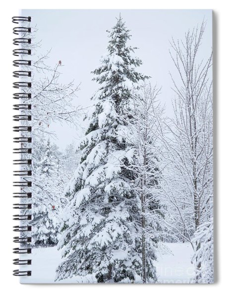 Tree And Snow Spiral Notebook