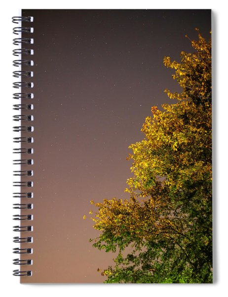 Tree And Stars Spiral Notebook