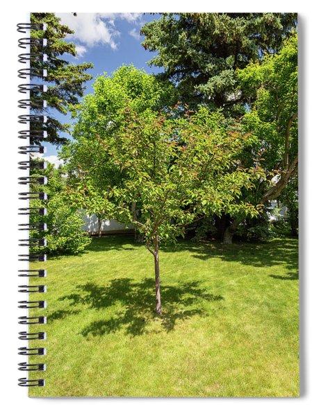 Tree In The Garden Spiral Notebook