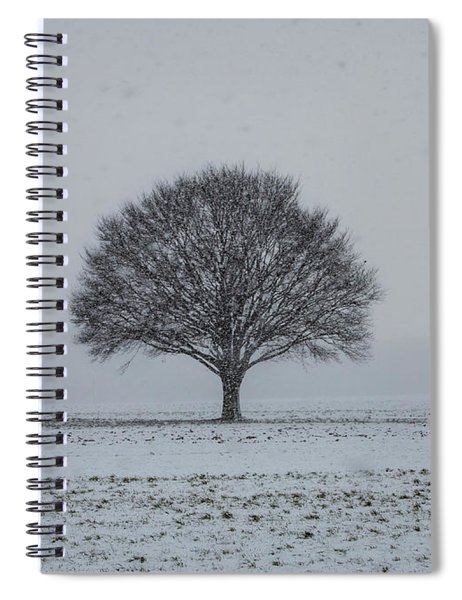 Tree In The Snow Spiral Notebook