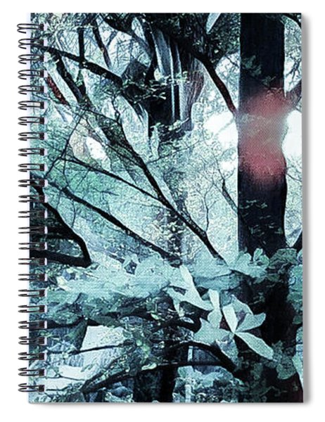 Tree Of Glass Spiral Notebook