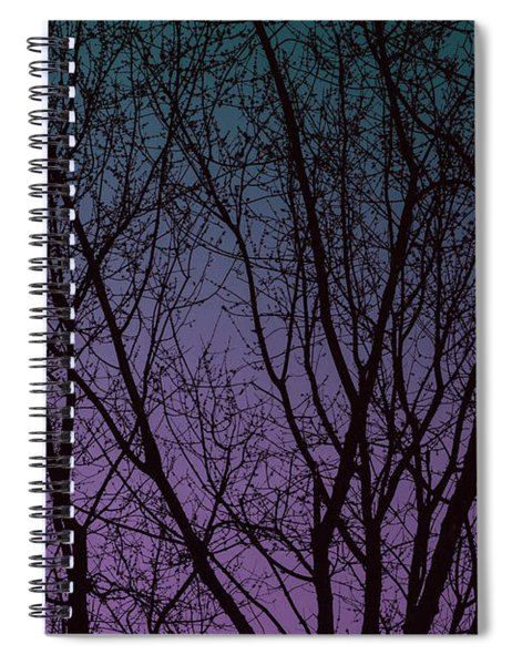 Tree Silhouette Against Blue And Purple Spiral Notebook
