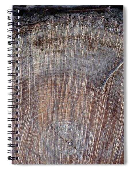 Canal Stumps-12 33 Rings  Spiral Notebook