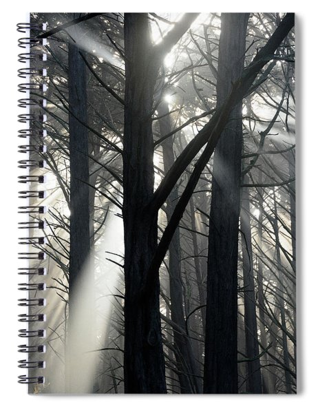 Trees And Fog Spiral Notebook