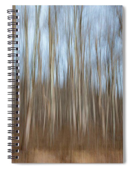 Trees In The Forest Spiral Notebook