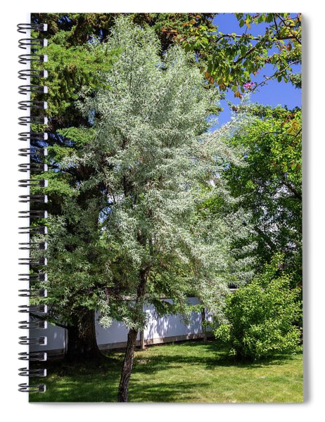 Trees In The Garden Spiral Notebook