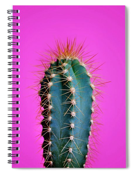 Trendy Neon Cactus Closeup Over Bright Pink Pastel Background. C Spiral Notebook