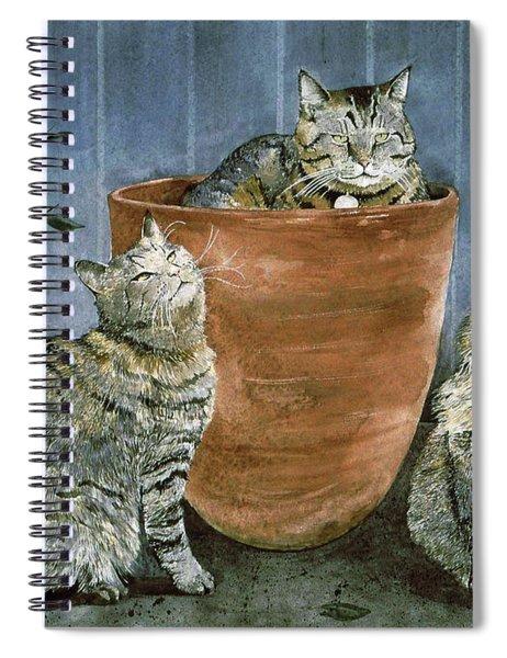 Tres Gatos Spiral Notebook