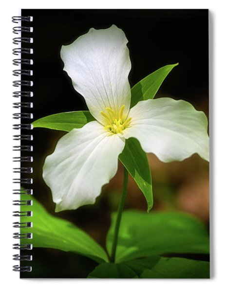 Spiral Notebook featuring the photograph Trillium 1 by Heather Kenward