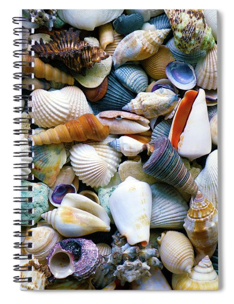 Spiral Notebook featuring the photograph Tropical Treasure Seashells A91218 by Mas Art Studio