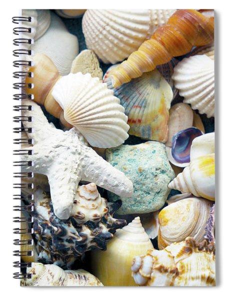 Spiral Notebook featuring the photograph Tropical Treasure Seashells B91218 by Mas Art Studio