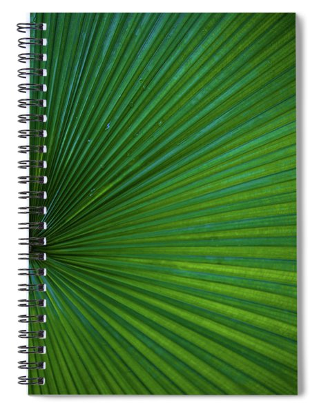 Spiral Notebook featuring the photograph Tropical Leaf by Emily Johnson