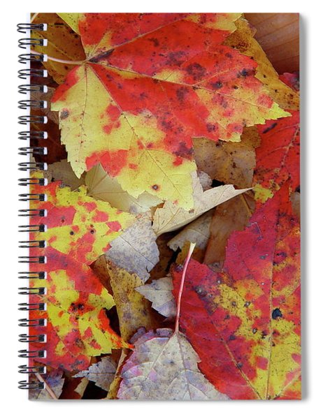 True Autumn Colors Spiral Notebook