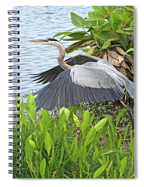 True Blue #1 Spiral Notebook