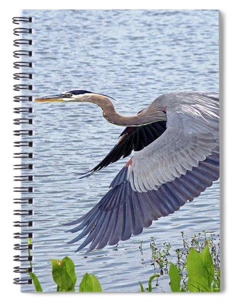 True Blue #2 Spiral Notebook