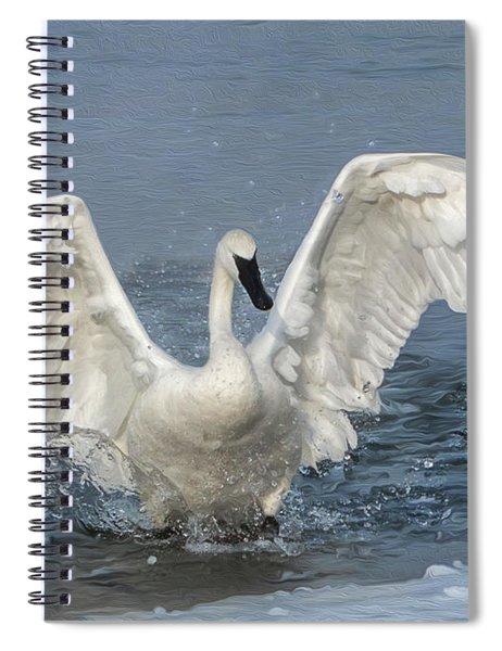 Trumpeter Swan Splash Spiral Notebook