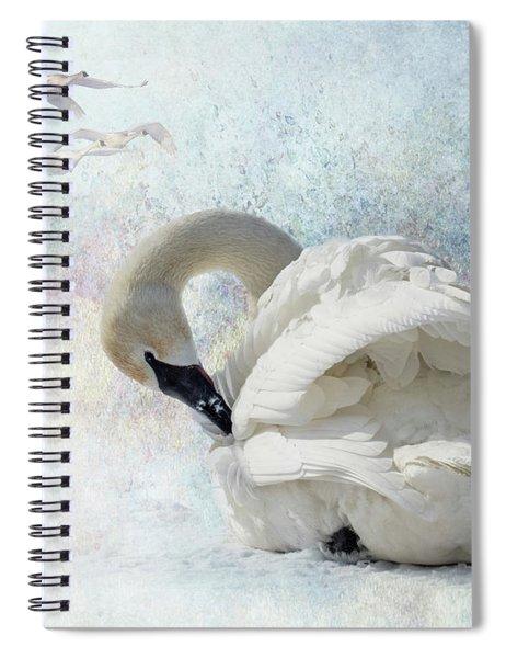 Trumpeter Textures #2 - Swan Preening Spiral Notebook