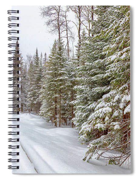 Spiral Notebook featuring the photograph Tug Hill Pines by Rod Best