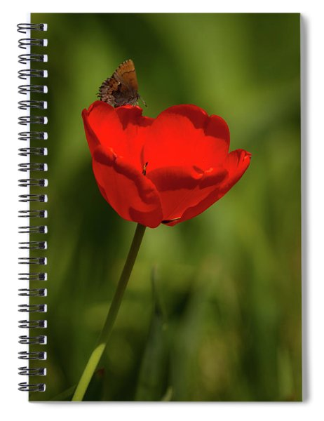 Tulip And Skipper Spiral Notebook
