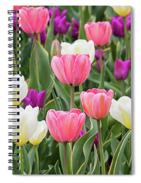Spiral Notebook featuring the photograph Tulip Field by Emily Johnson