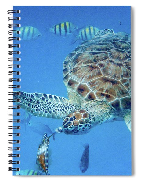 Turning Turtle Spiral Notebook