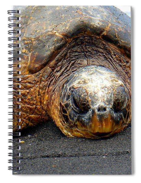 Turtle Rest Stop Spiral Notebook