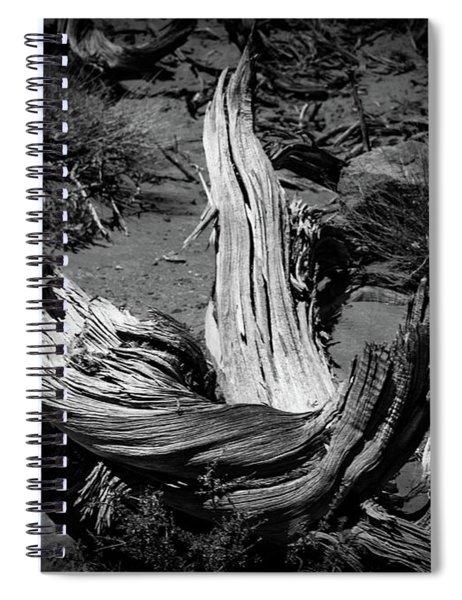 Twisted Juniper Stump Spiral Notebook