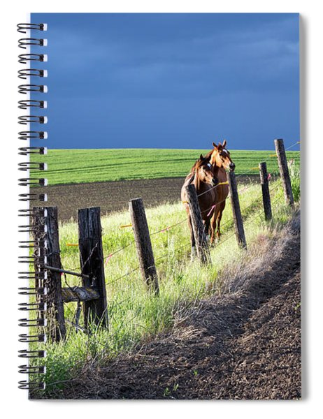 Two Horses In The Palouse Spiral Notebook