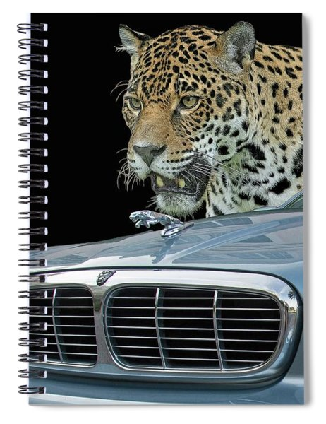 Two Jaguars 2 Spiral Notebook