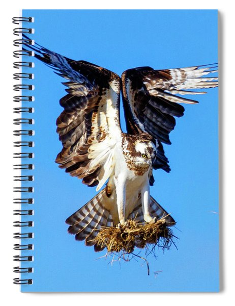 Two  Talons Full Spiral Notebook