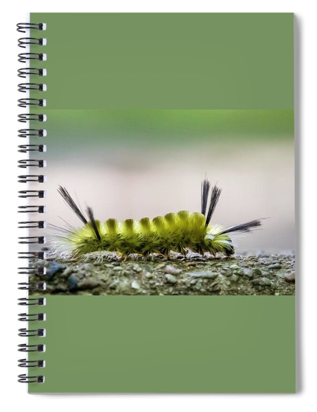 Underfoot Spiral Notebook