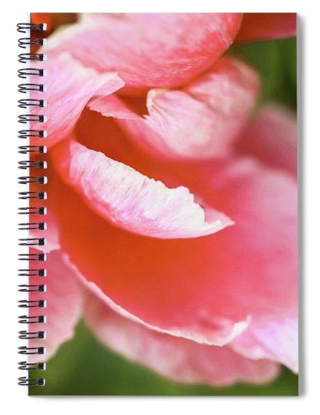 Unfurling Awe Spiral Notebook