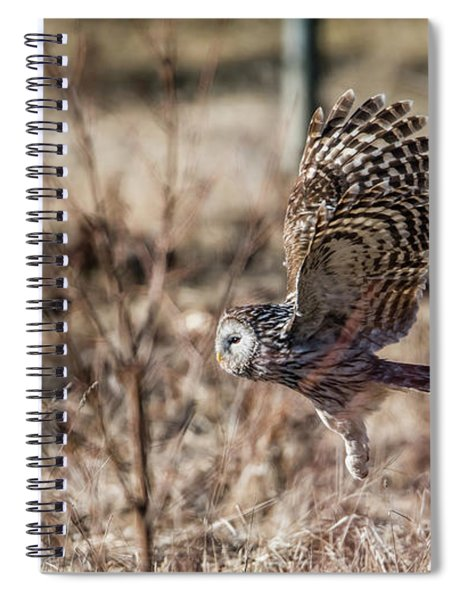 Ural Owl Flying Close To The Ground Spiral Notebook