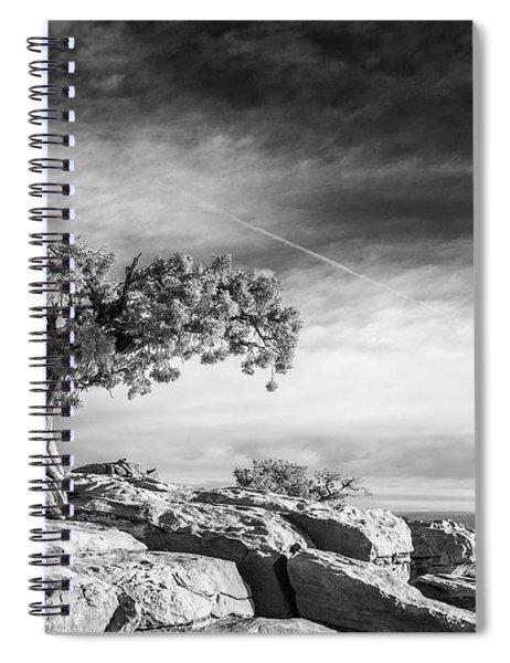 Utah Juniper Black And White Print Spiral Notebook