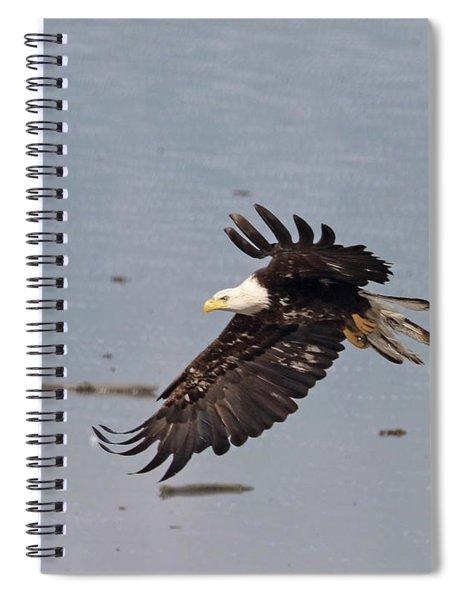 Valdez Eagle Two Spiral Notebook