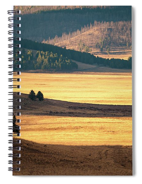 Valles Caldera Detail Spiral Notebook