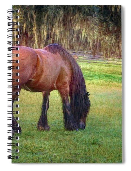 Vanner Swish Spiral Notebook