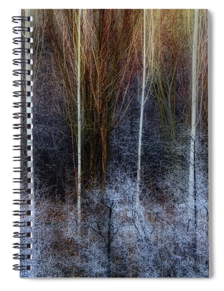 Veins Of Forest Spiral Notebook