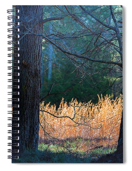 Verticals And Horizontals Spiral Notebook
