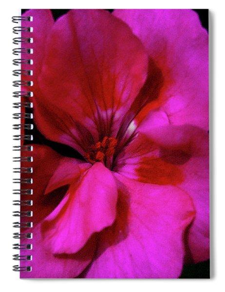 Vibrant Art Spiral Notebook