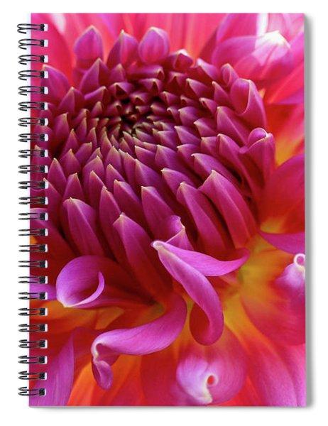 Vibrant Dahlia Spiral Notebook